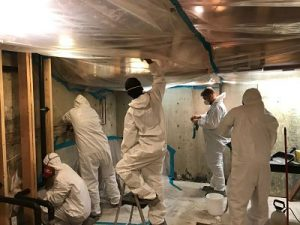 mold-removal-damage-repair-restoration-team